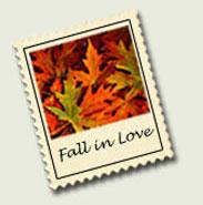 NH Fall Foliage